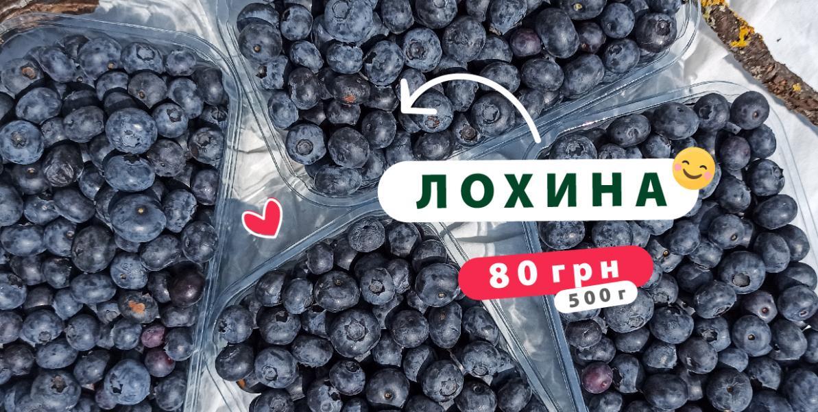 Лохина Україна 500г