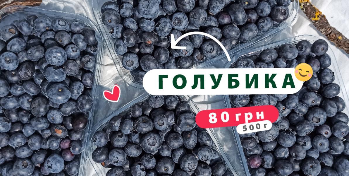 Голубика Украина 500г
