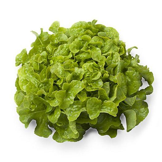 Салат Дубовый лист зеленый - FreshMart