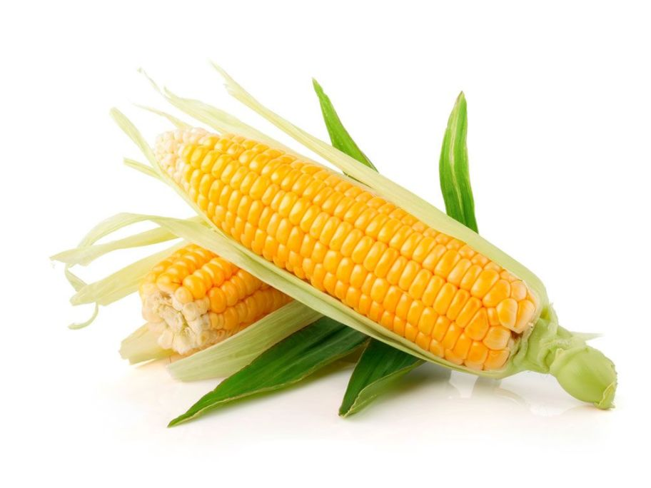 Кукуруза сладкая Украина - FreshMart
