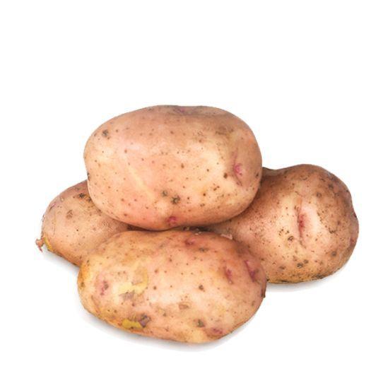 Картофель розовый молодой мелкий - FreshMart