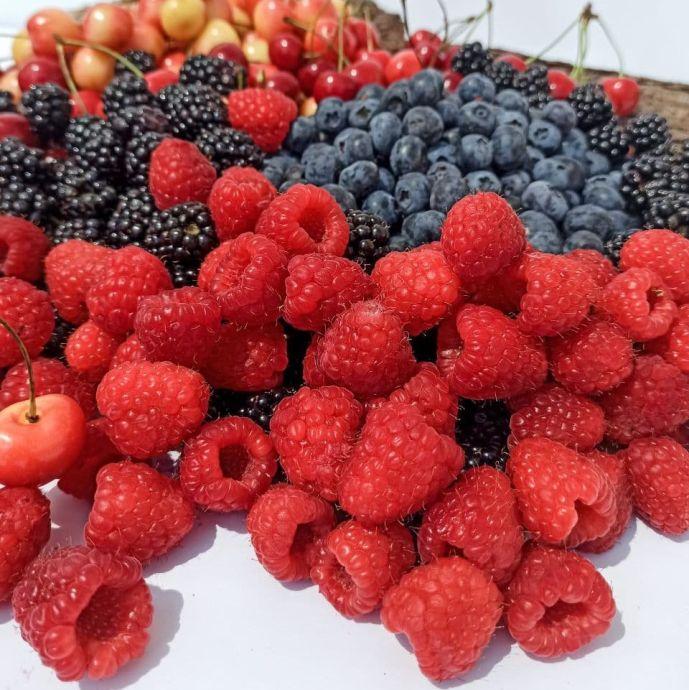 Набор сезонных ягод ХL: фото 2 - FreshMart