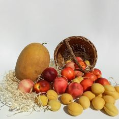 Набор сезонных фруктов - FreshMart