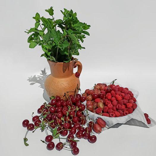 Набор для ягодного компота с мятой - FreshMart