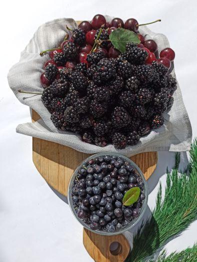 Набор для ягодного компота - FreshMart