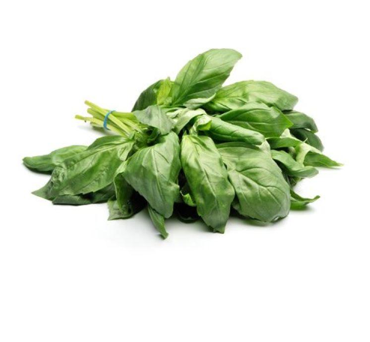 Базилик зелёный тайский 50г - FreshMart